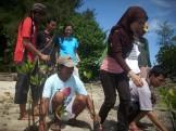 menanam mangrove06